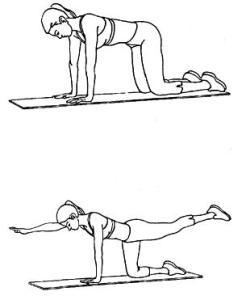 Общие упражнения