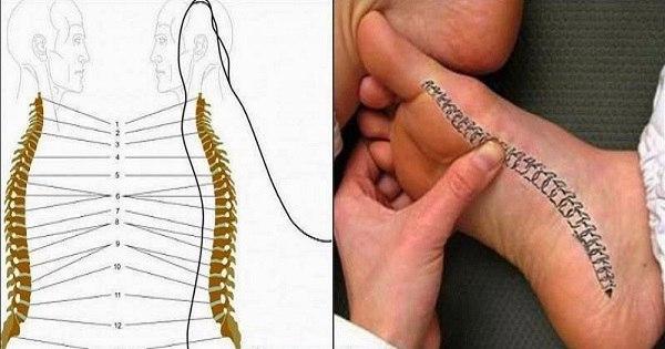 Как снять боль в спине при помощи стопы.